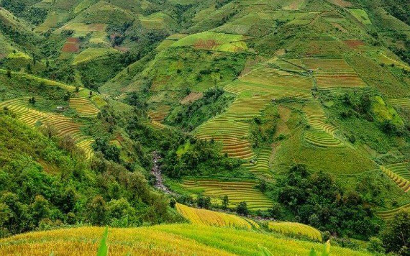 Quy định về giao đất, cho thuê đất